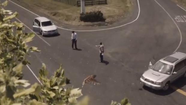 vidéo nouvelle zélande sécurité routière